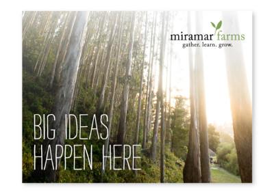 Miramar Farms Email Campaign